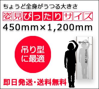リフェクス450x1200